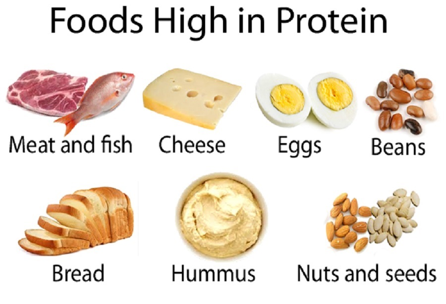 Quick Weight Loss – Protein Sources