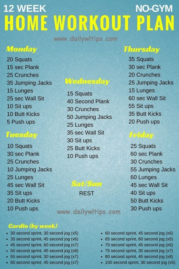 Home Workout Plans No Equipment